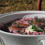 Beet Borscht by Homemade Mommy