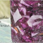 Purple Sauerkraut by Homemade Mommy