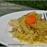 Sweet and Sour Fermented Coleslaw