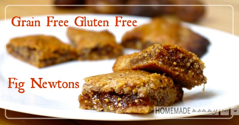 Grain Free Fig Newtons | www.homemademommy.net